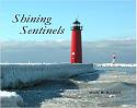 Shining Sentinels Book